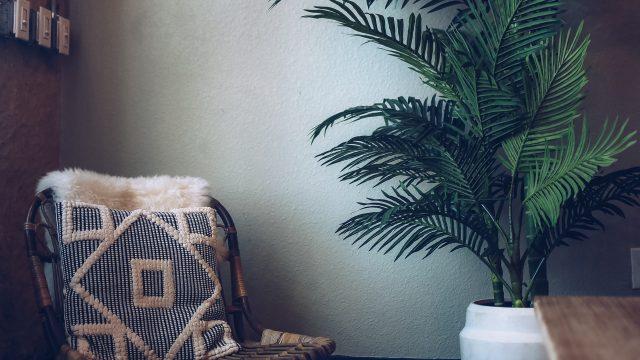 createherstock-Fall-Comforts-Isha-Gaines-5